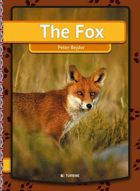 The fox af Peter Bejder