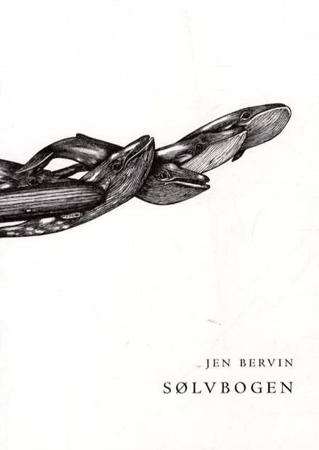 Sølvbogen af Jen Bervin
