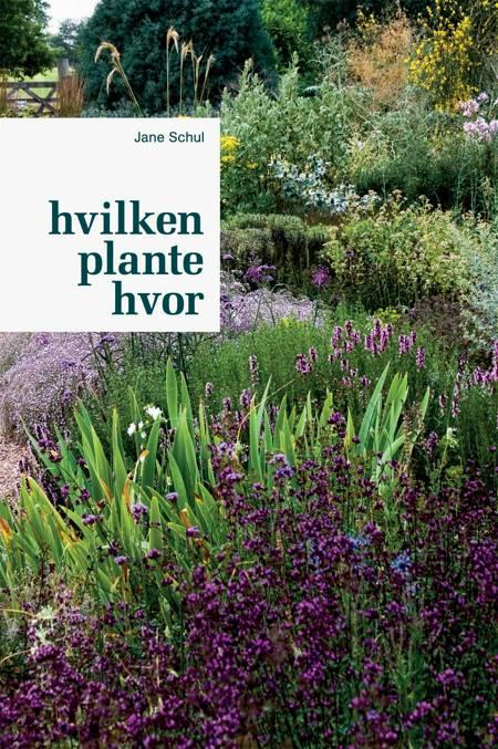 Hvilken plante hvor af Jane Schul