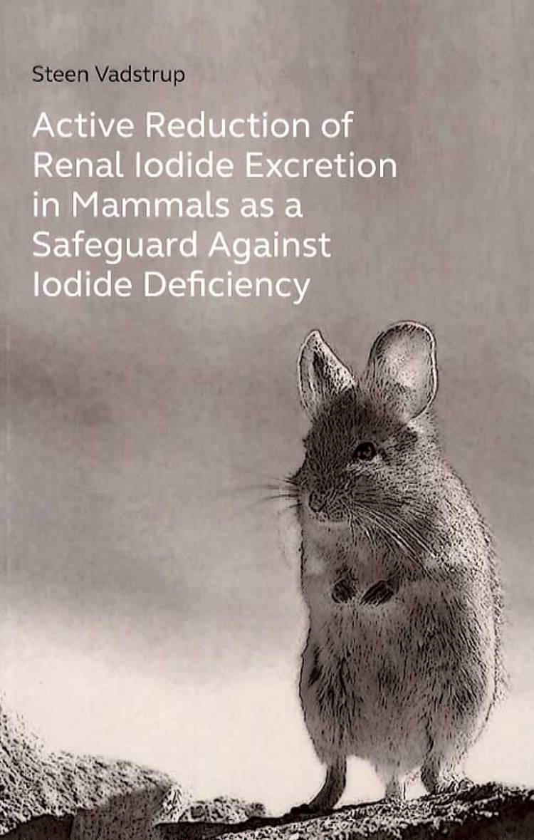 Active reduction of renal iodide excretion in mammals as a safeguard against iodide deficiency af Steen Vadstrup