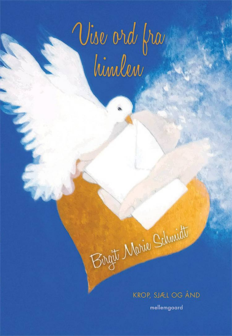Vise ord fra himlen af Birgit Marie Schmidt
