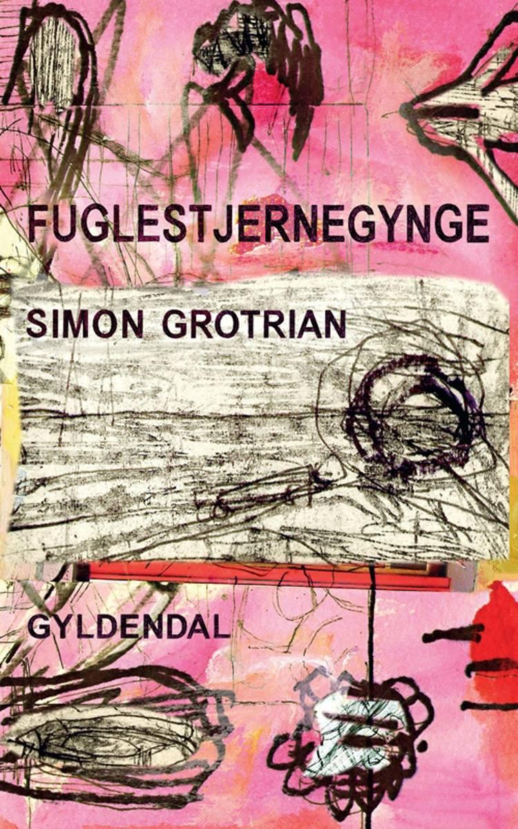 Fuglestjernegynge af Simon Grotrian