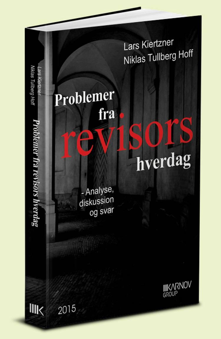 Problemer fra revisors hverdag af Lars Kiertzner og Niklas Tullberg Hoff