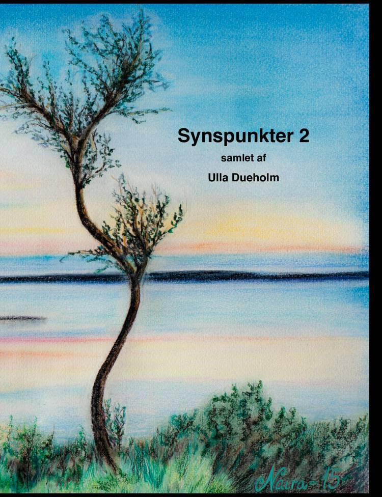 Synspunkter 2 af Ulla Dueholm