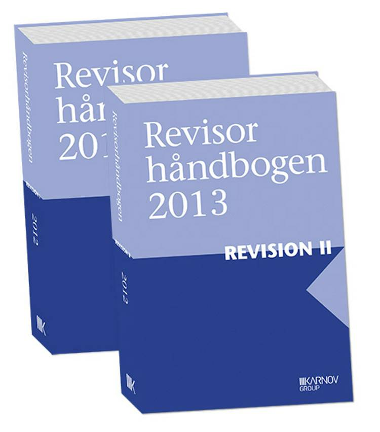 Revisorhåndbogen 2013, Revision