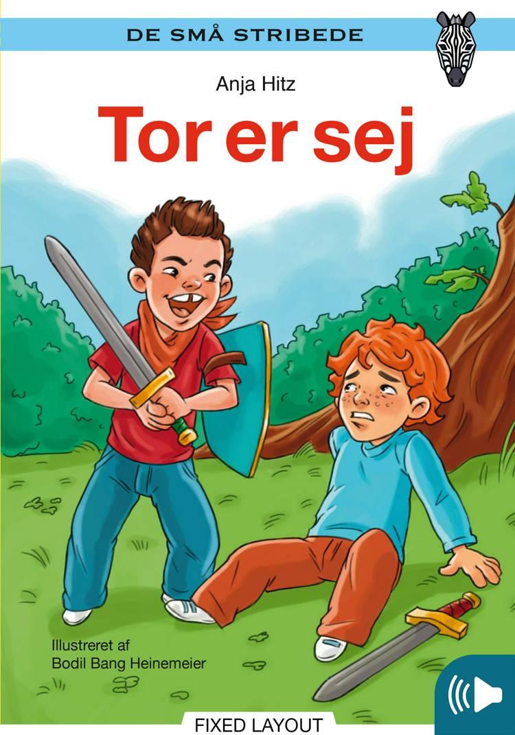 Tor er sej af Anja Hitz