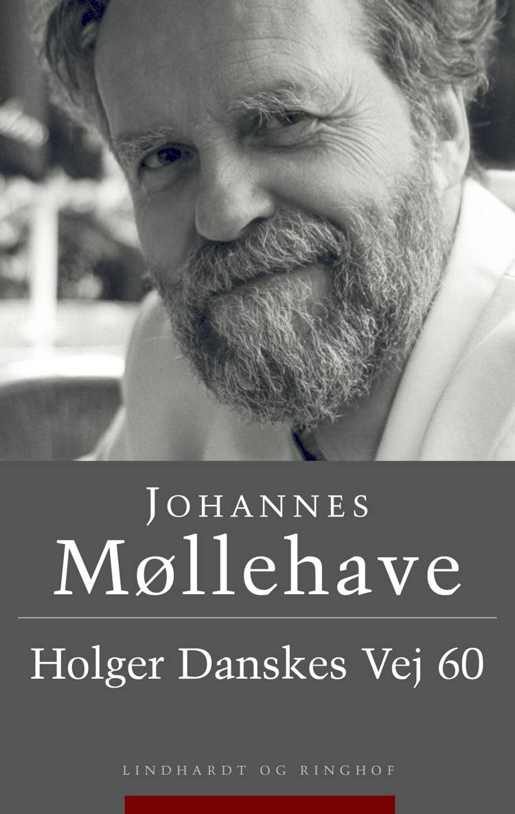 Holger Danskes Vej 60 af Johannes Møllehave