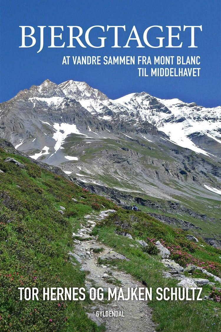 Bjergtaget af Majken Schultz og Tor Hernes