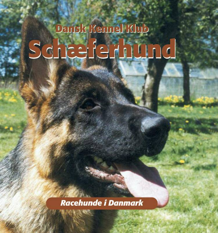Schæferhund af Dansk Kennelklub