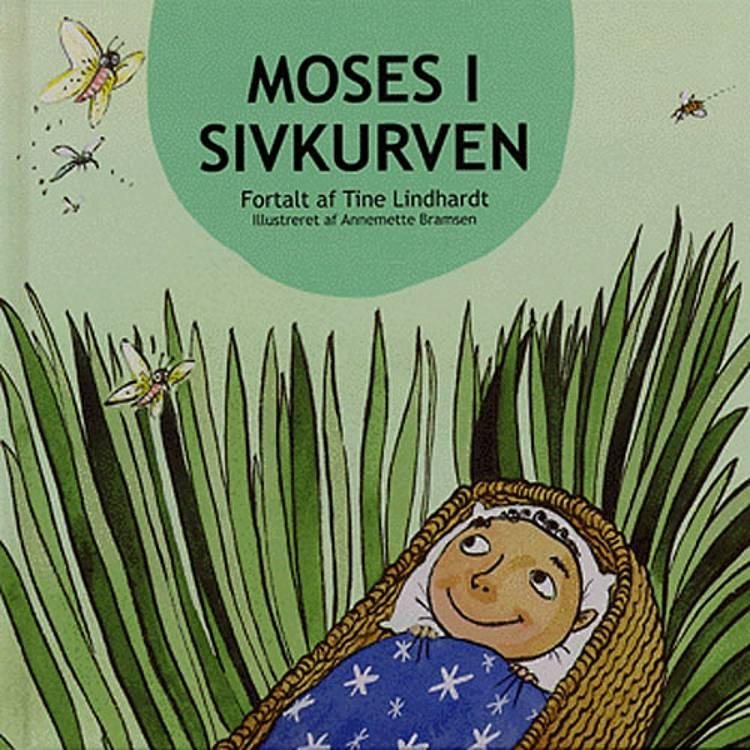 Moses i sivkurven af Tine Lindhardt