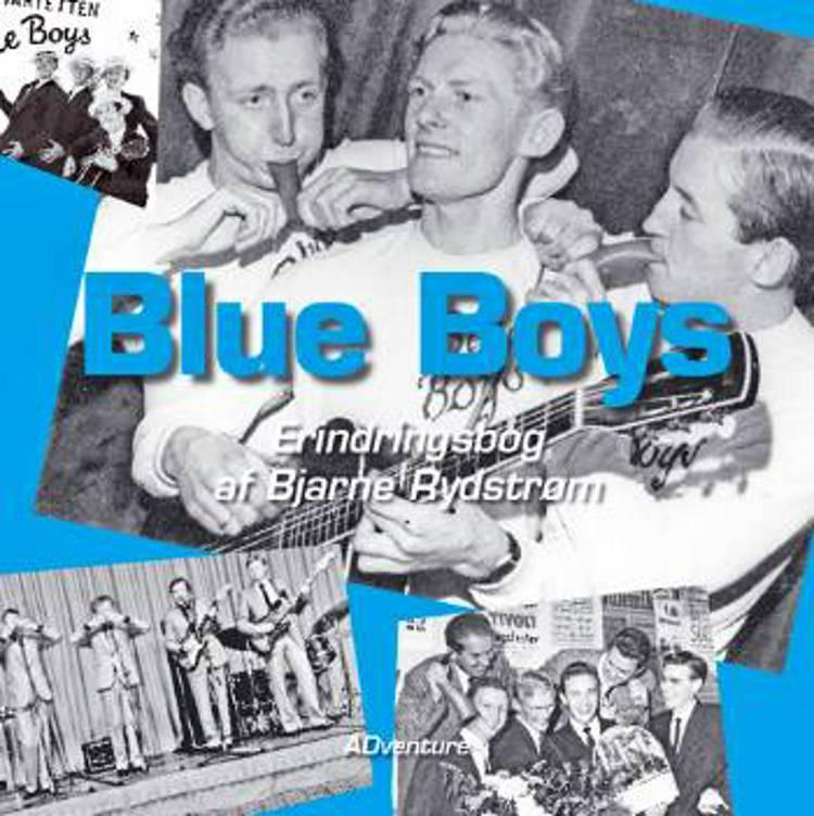 Blue boys af Bjarne Rydstrøm