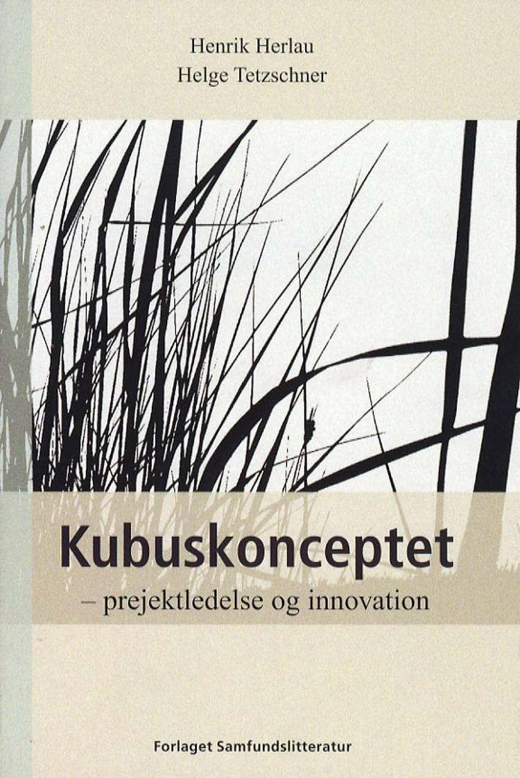 Kubuskonceptet af Helge Tetzschner og Henrik Herlau