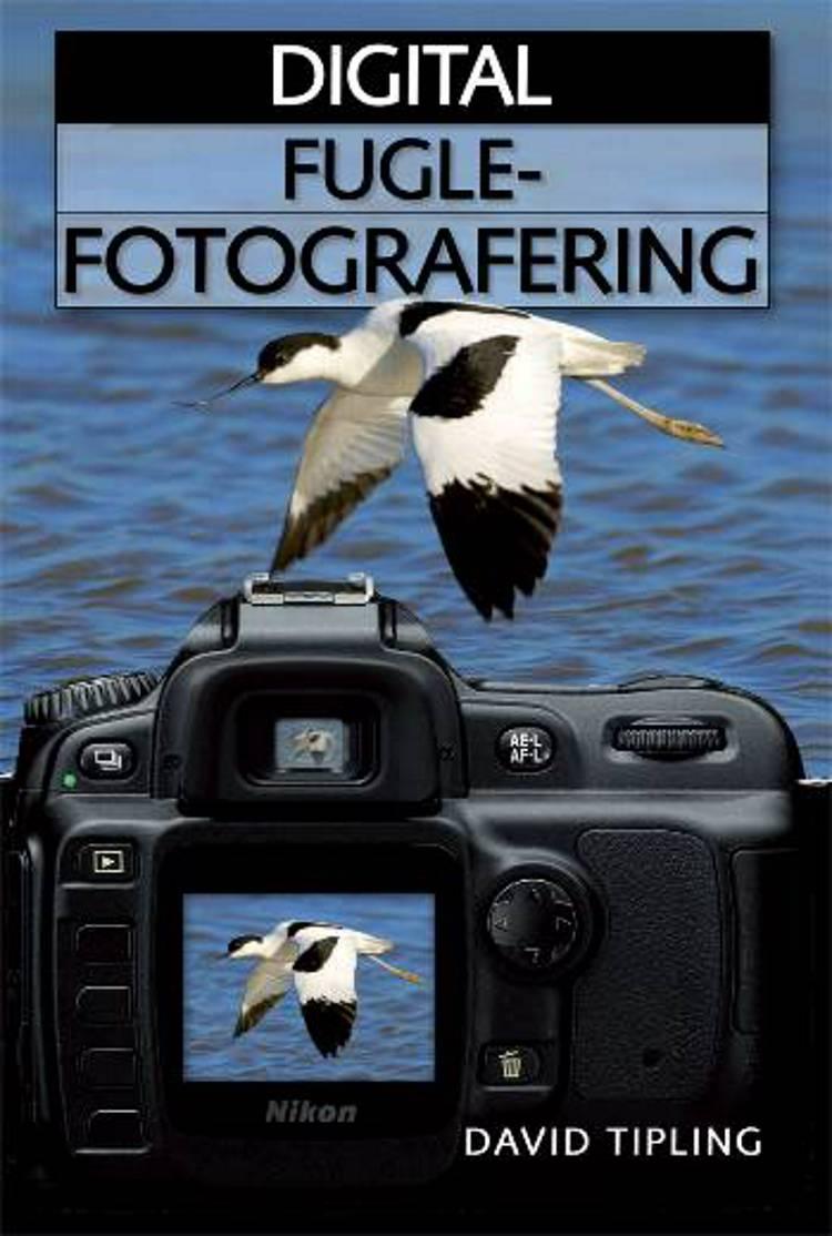 Digital fuglefotografering af David Tipling
