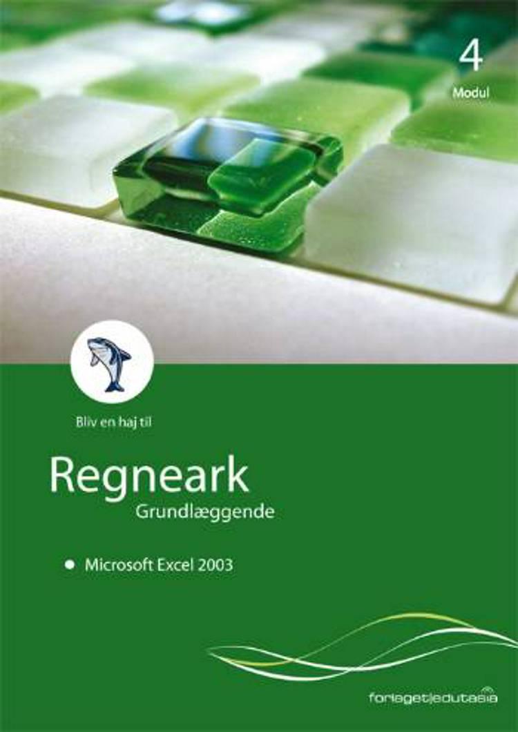 Regneark, grundlæggende - Microsoft Excel 2003 af Lone Riemer Henningsen