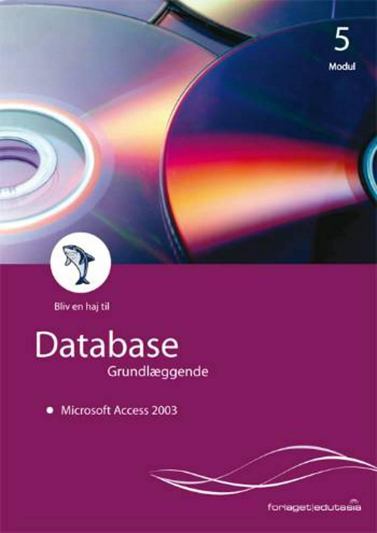 Database, grundlæggende - Microsoft Access 2003 af Lone Riemer Henningsen