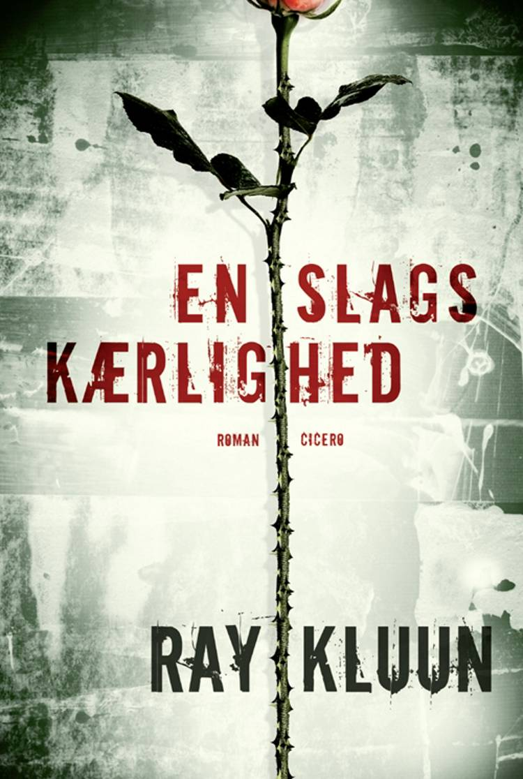 En slags kærlighed af Ray Kluun