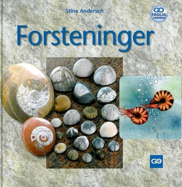 Forsteninger af Stine Andersen