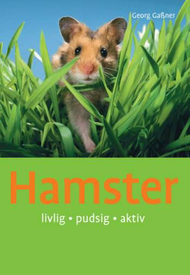 Hamster af Georg Gassner