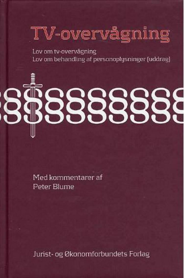 Tv-overvågning af Peter Blume og H. Petersen m.fl.