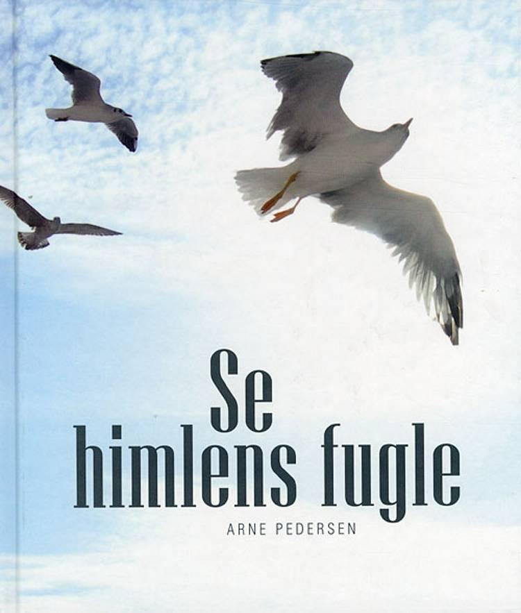 Se himlens fugle af Arne Pedersen