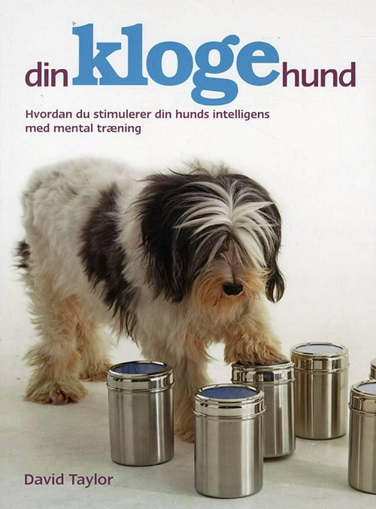 Din kloge hund af David Taylor