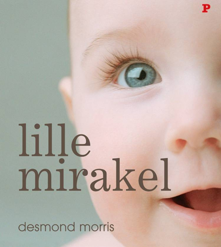 Lille Mirakel af Desmond Morris