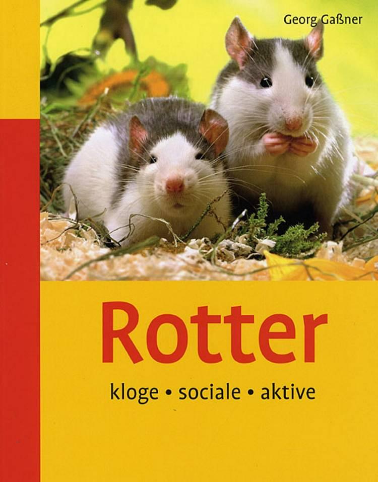 Rotter af Georg Gassner