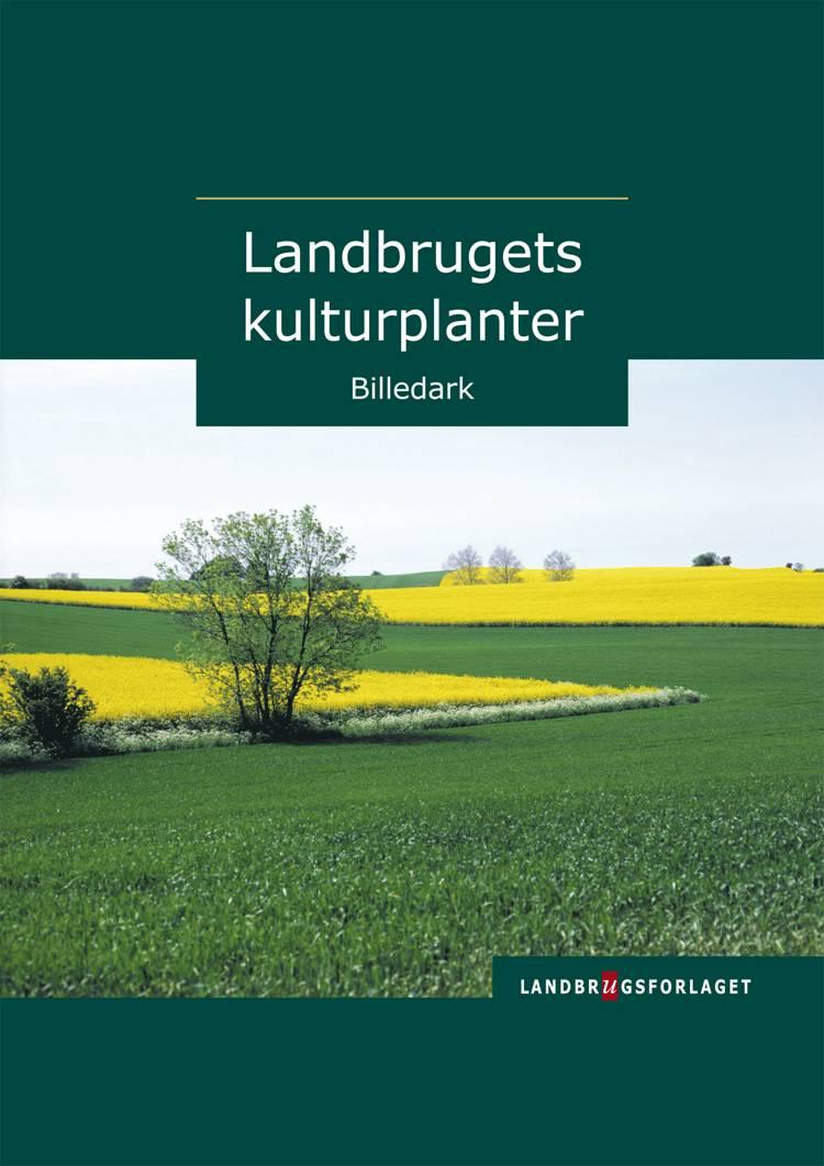 Landbrugets kulturplanter af Anne Eriksen