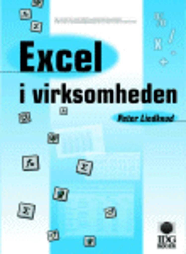 Excel i virksomheden af Peter Lindknud