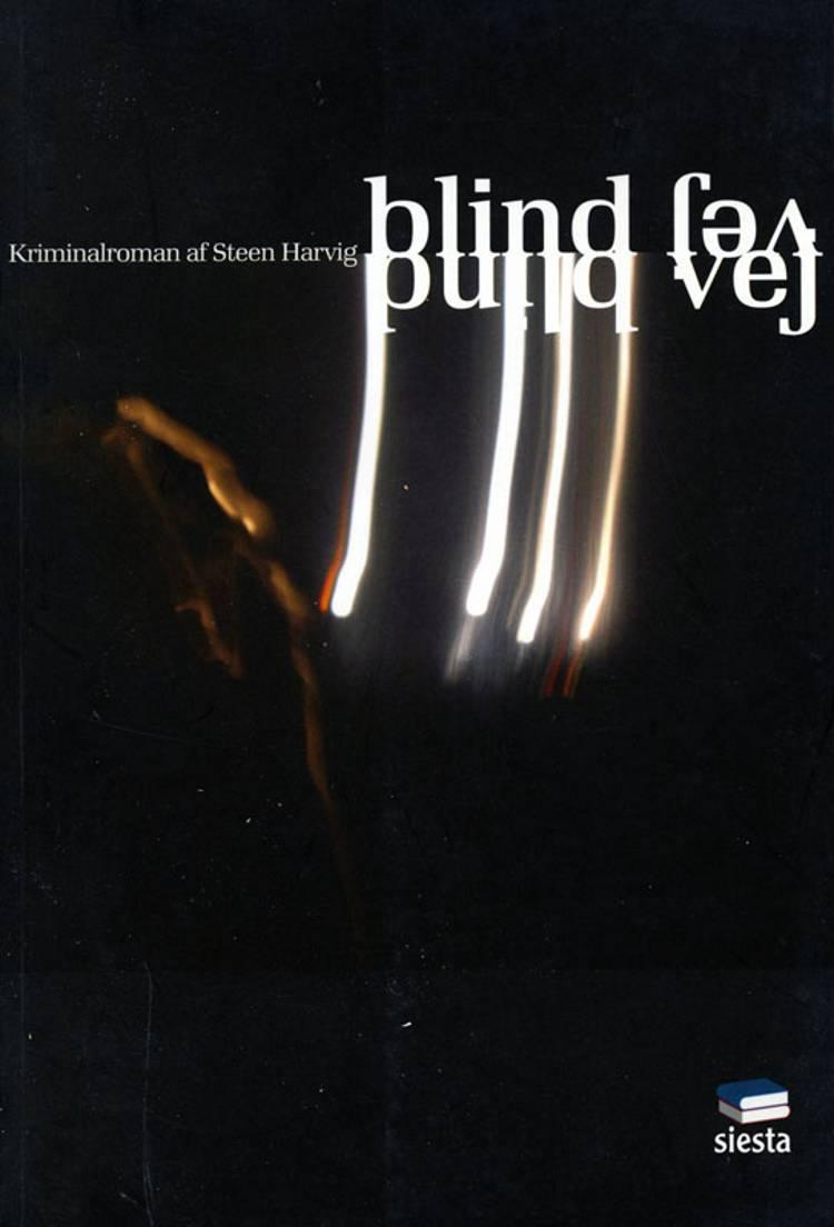 Blind vej af Steen Harvig