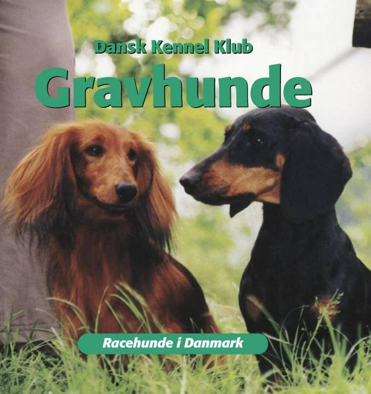 Gravhunde af Dansk Kennelklub