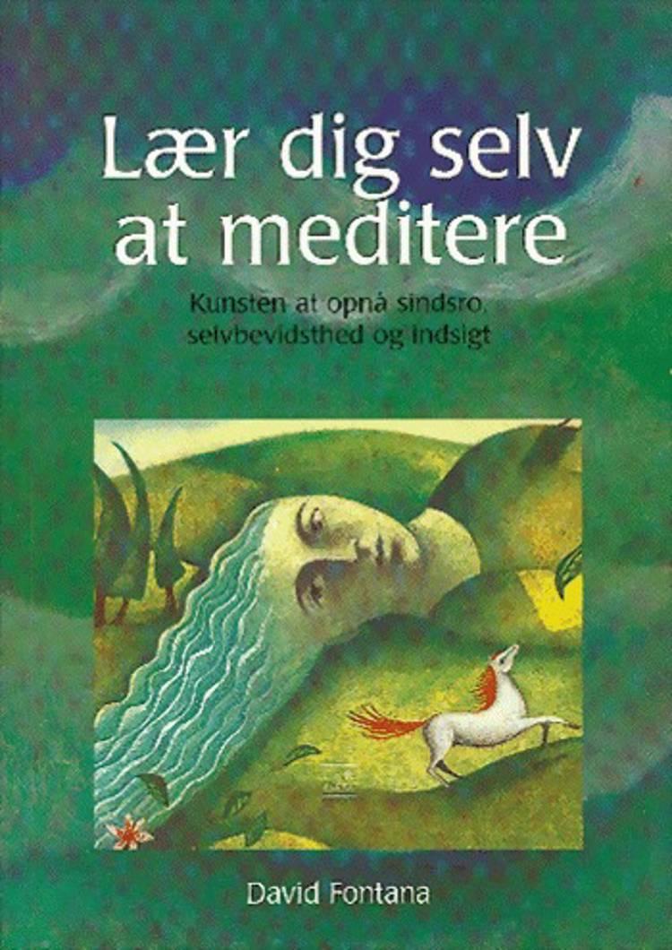 Lær dig selv at meditere af David Fontana