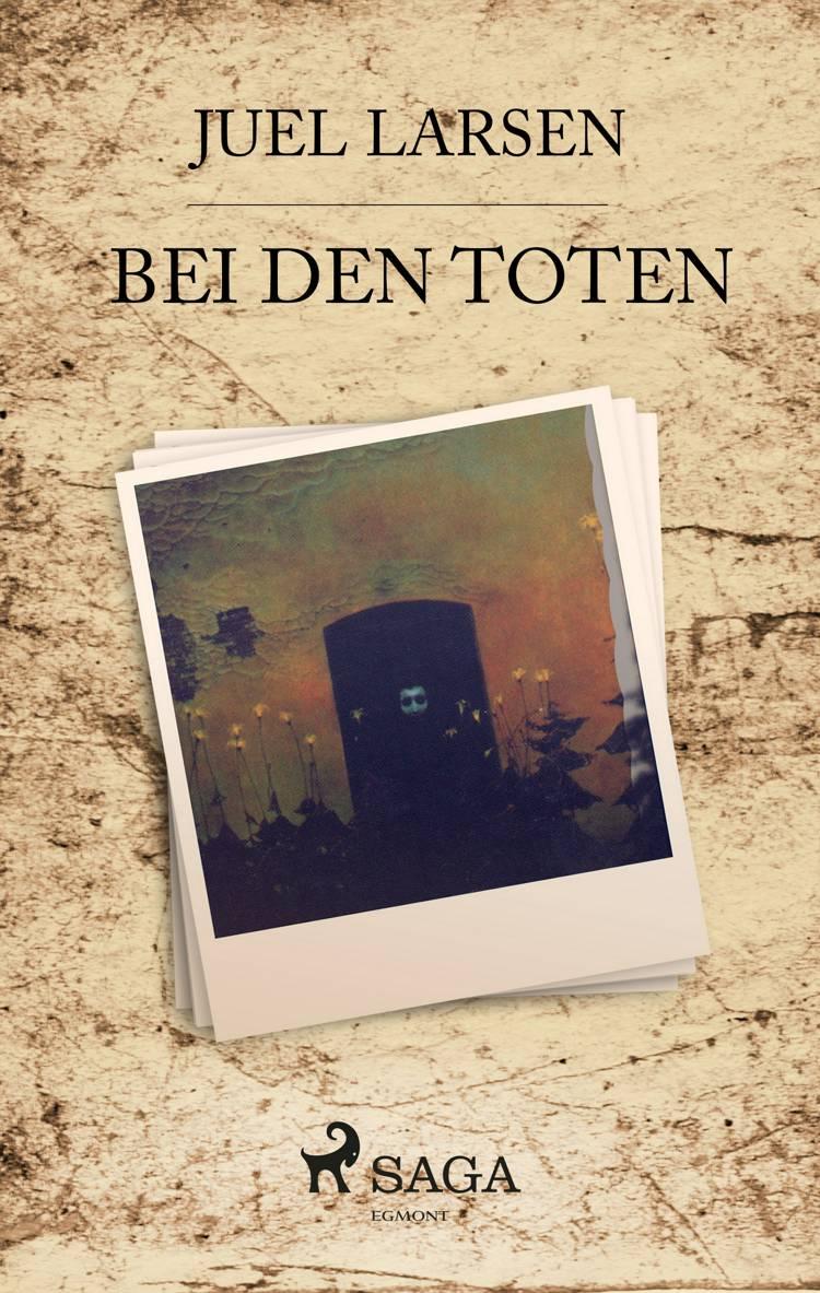 Bei den Toten af Niels Peter Juel Larsen
