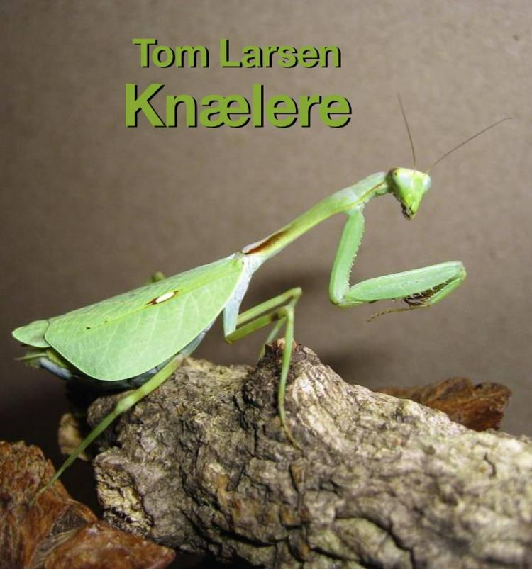 Knælere af Tom Larsen