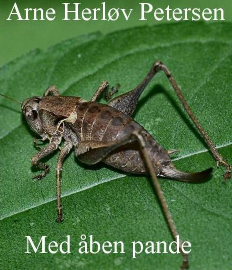 Med åben pande af Arne Herløv Petersen