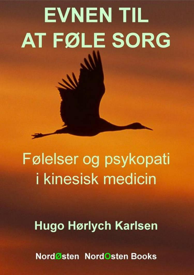 Evnen til at føle sorg af Hugo Hørlych Karlsen