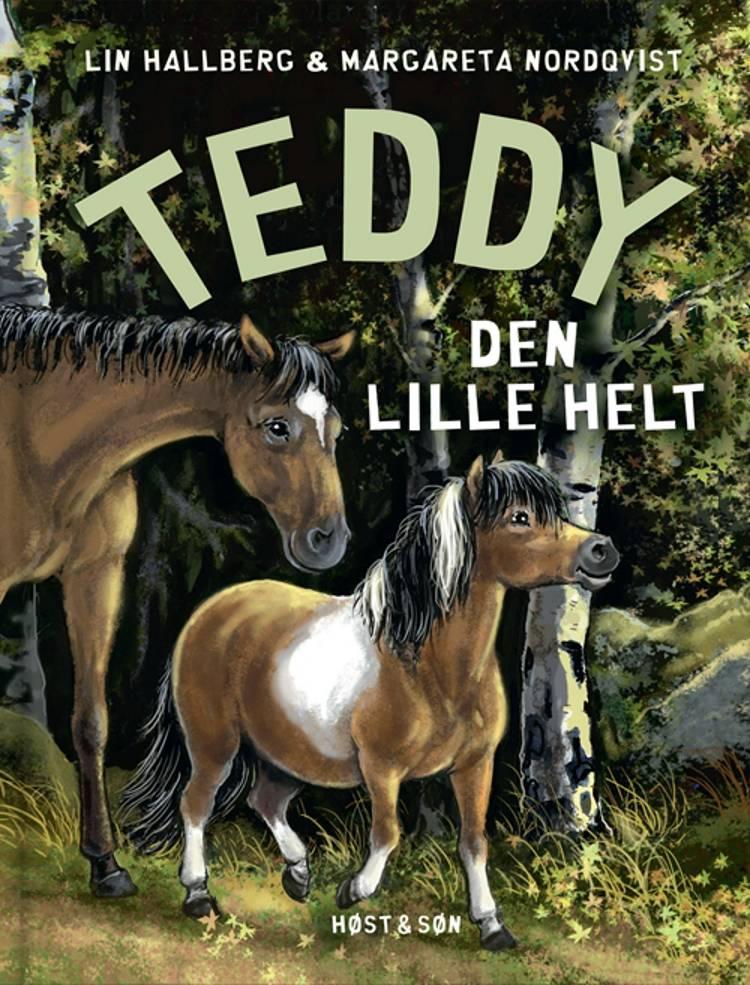 Teddy - den lille helt af Lin Hallberg