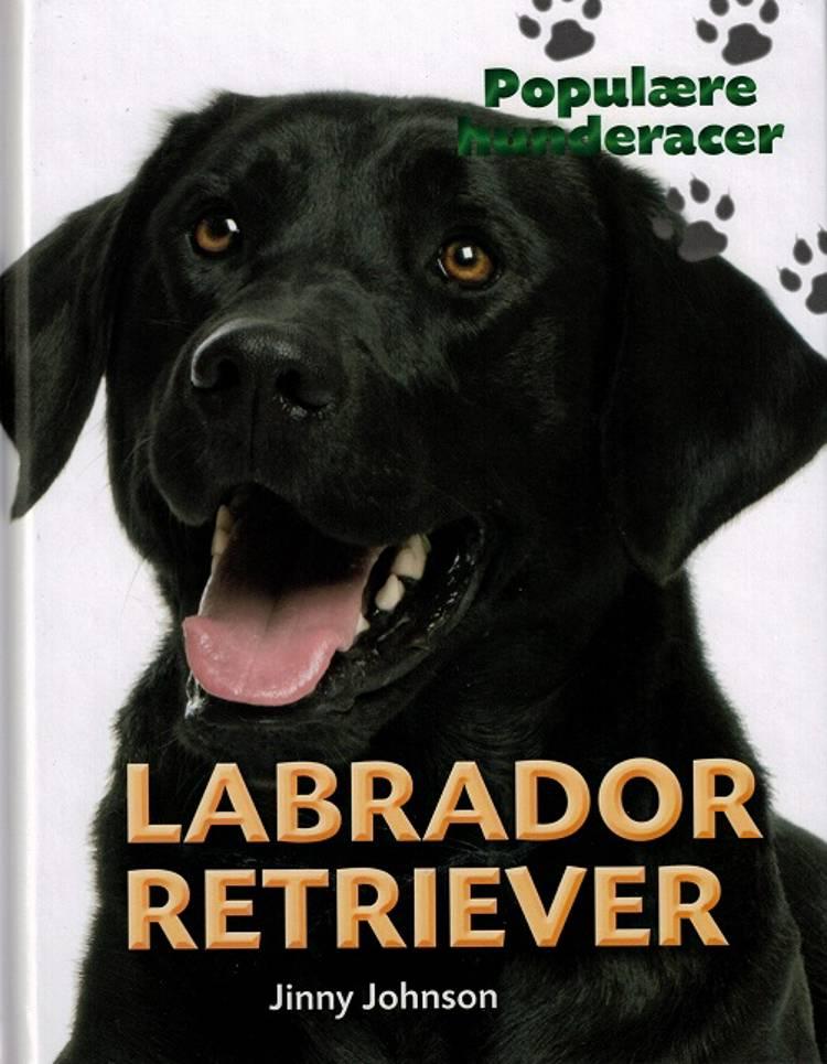 Labrador retriever af Jinny Johnson