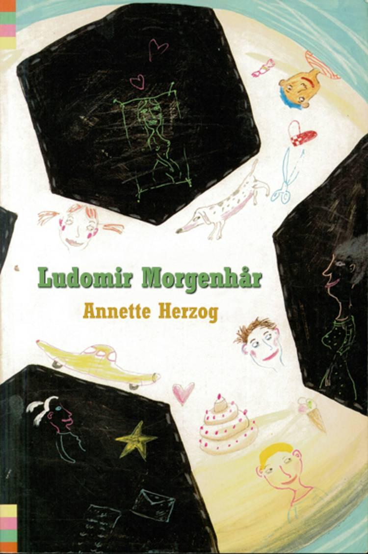 Ludomir Morgenhår af Annette Herzog
