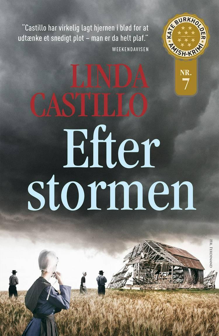 Efter stormen af Linda Castillo