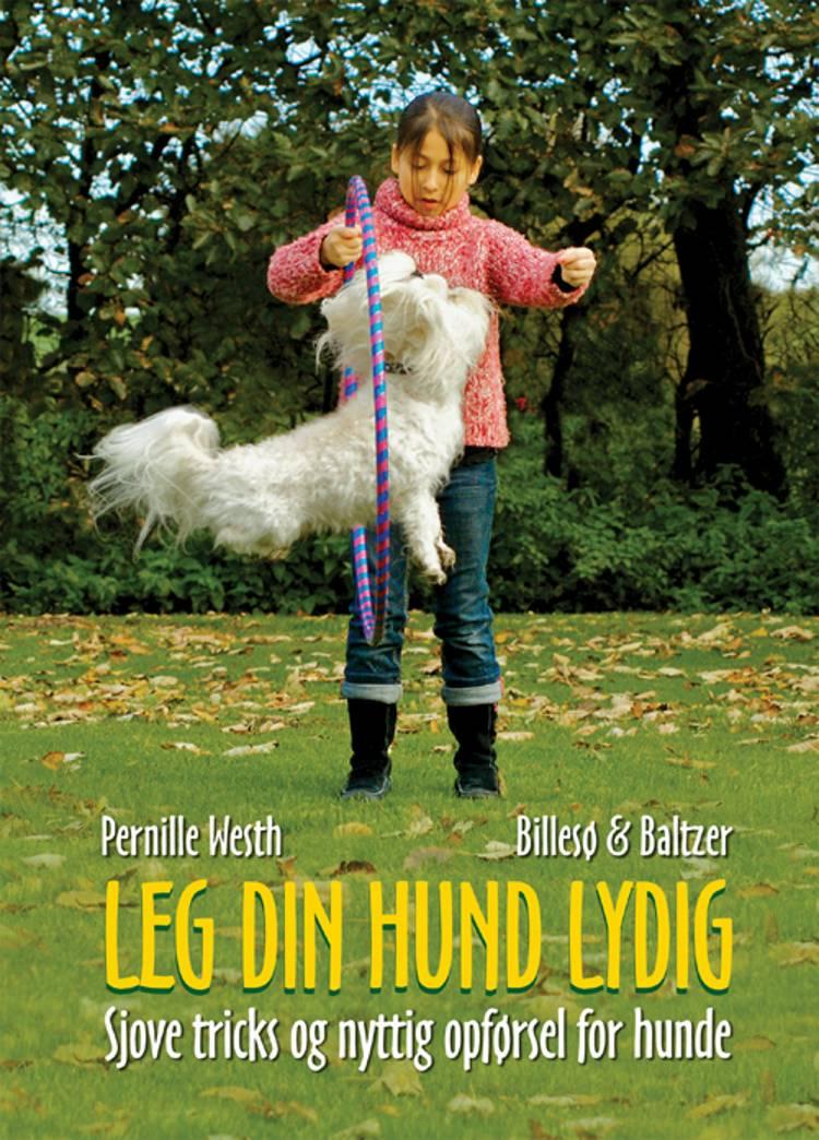 Lær din hund lydig af Pernille Westh