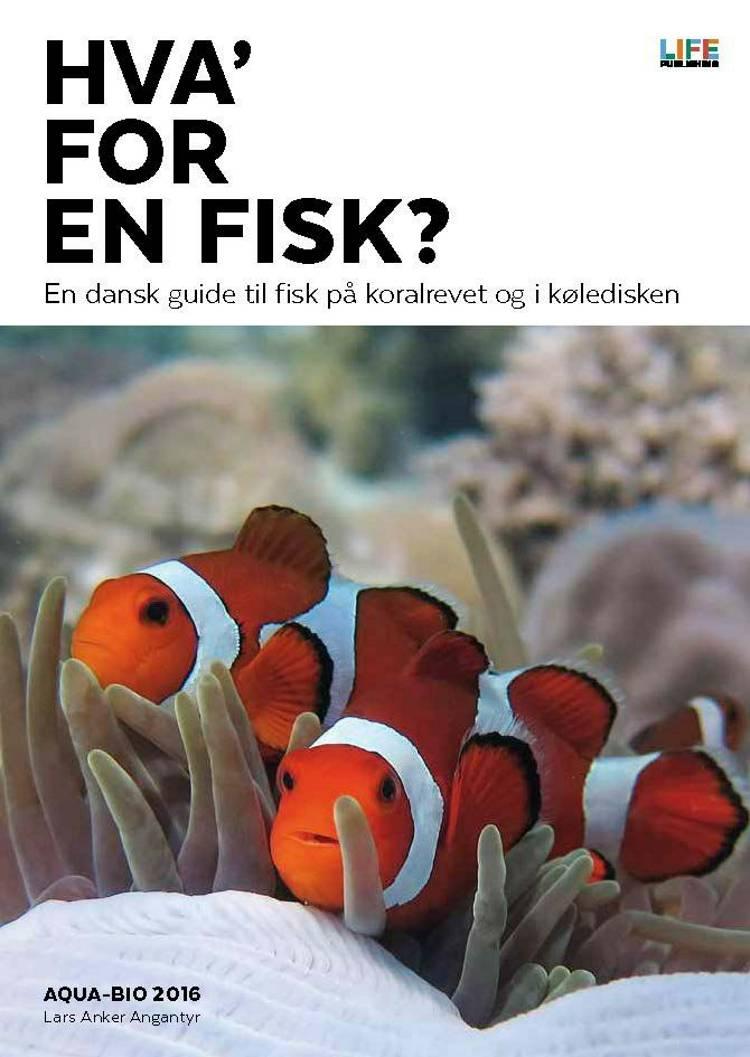 Hva' for en fisk? af Lars Anker Angantyr