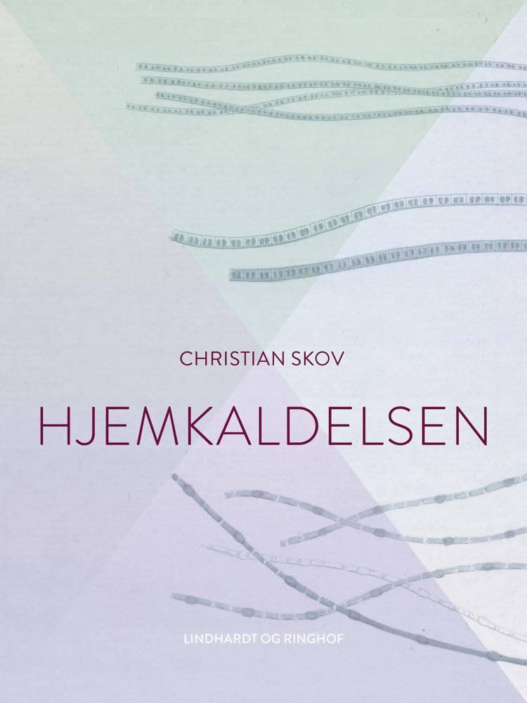 Hjemkaldelsen af Christian Skov