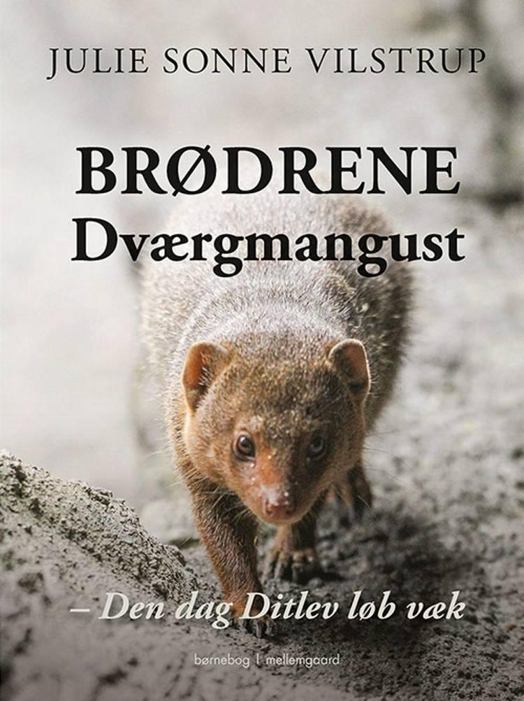 Brødrene Dværgmangust af Julie Vilstrup