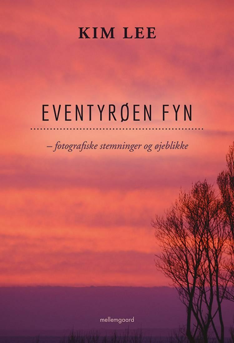 Eventyrøen Fyn af Kim Lee