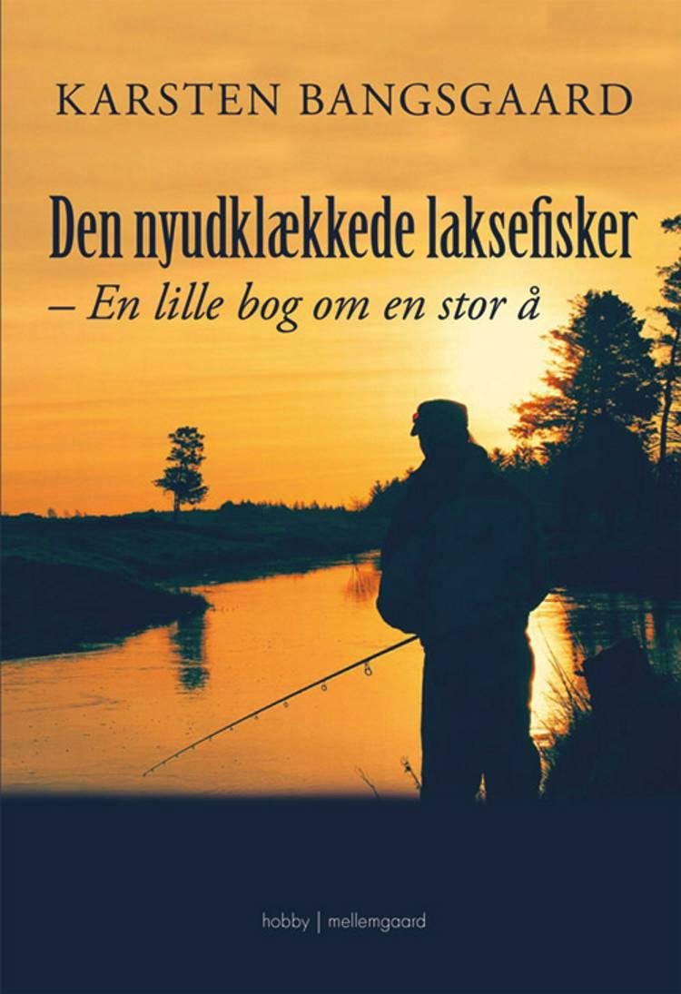Den nyudklækkede laksefisker af Karsten Bangsgaard