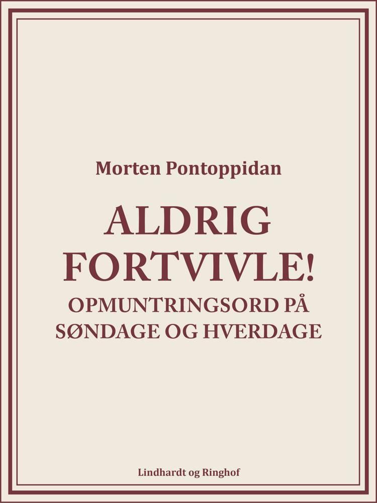 Aldrig fortvivle! af Morten Pontoppidan