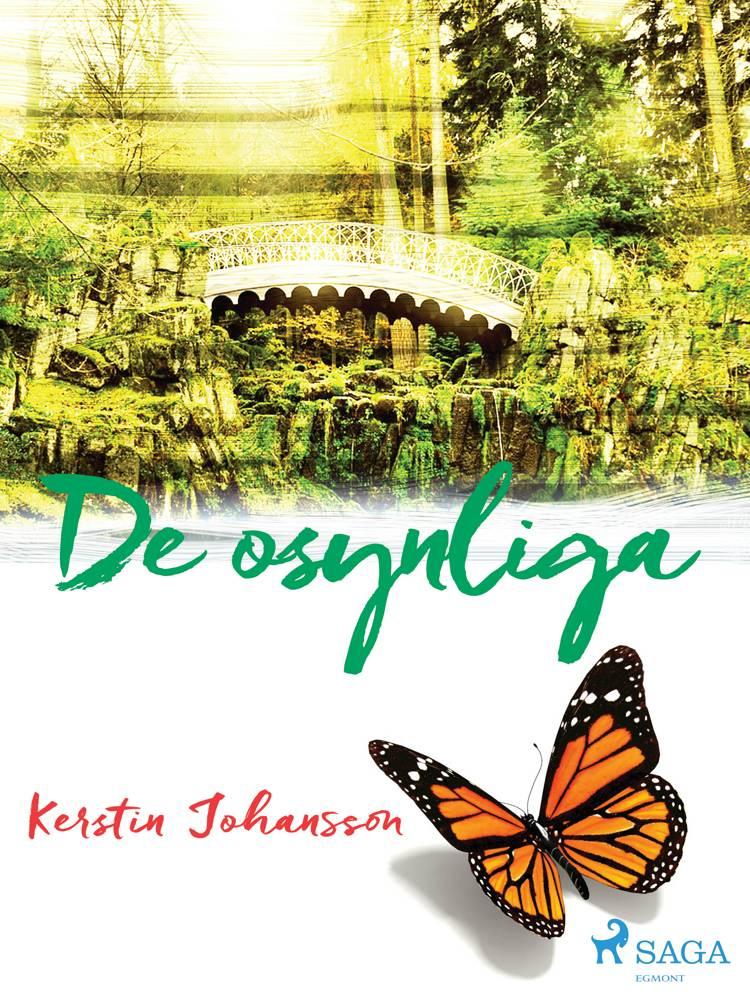 De osynliga af Kerstin Johansson