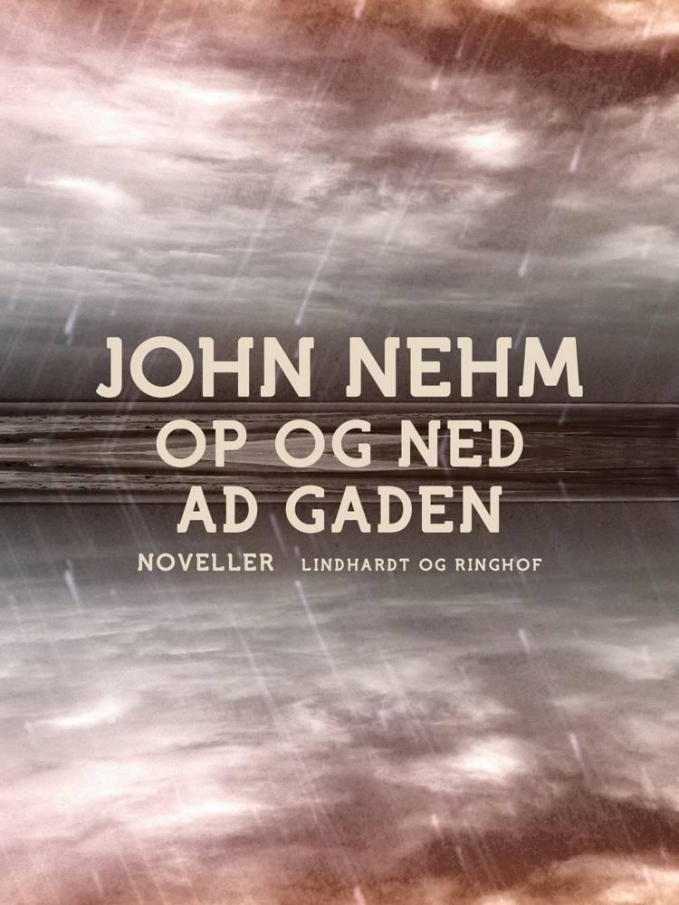 Op og ned ad gaden af John Nehm