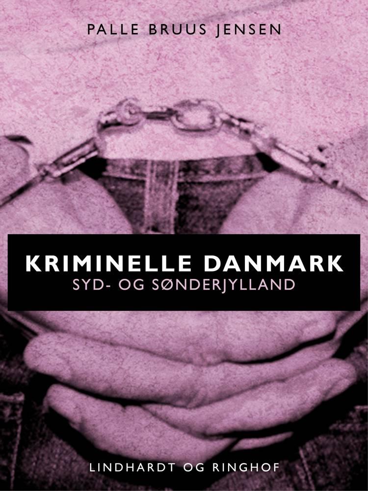 Kriminelle Danmark. Syd & Sønderjylland af Palle Bruus Jensen